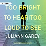 Too Bright to Hear Too Loud to See | Juliann Garey