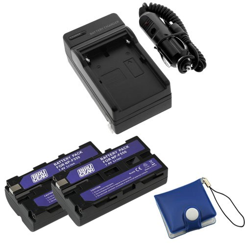 BIRUGEAR Travel Charger with Car Adapter + 2 x NP-F330 / NP-F550 / NP-F570 Battery + Memory Card Case for Sony DCR-VX2100, HDRFX1, HD1000U, HVRZ1U and Sony CCD-SC, CCD-TR, CCD-TRV Series Camcorders by BIRUGEAR