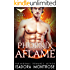 Phoenix Aflame  (Alpha Phoenix Book 2)