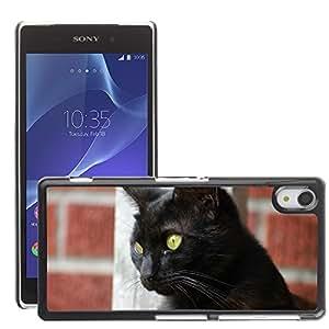 Hot Style Cell Phone PC Hard Case Cover // M00109012 Cat Animal Eyes Feline Cat'S Eyes // Sony Xepria Z2 L50W