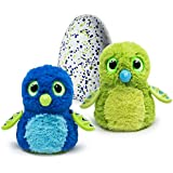 Hatchimals Hatching Egg-Interactive Creature-Draggle Plush, Blue/Green, Large