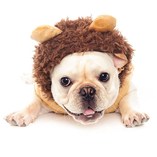 Dogloveit Halloween Lion Costumes Soft Dog Clothes For Dog Cat Puppy Pet, Brown, (Pitbull Lion Costume)