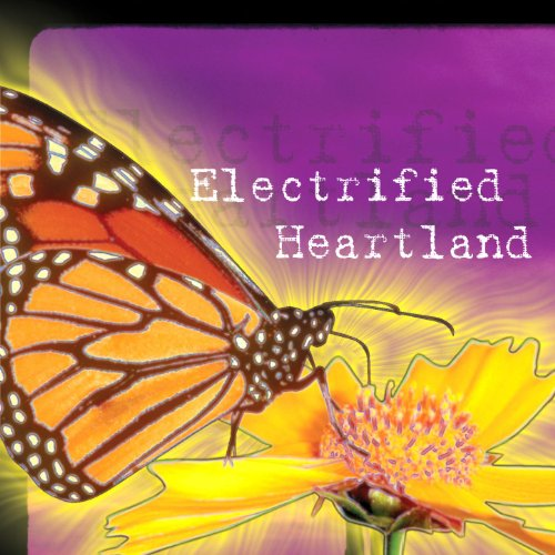 Electrified Heartland by Lindsay Tomasic