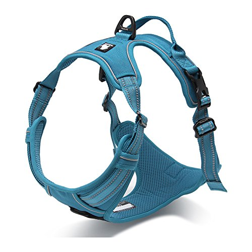 Pettom No-Pull Dog Harness Safe Control Reflective Outdoor Adventure Pet Vest Harness with Padded Handle(L, Blue)