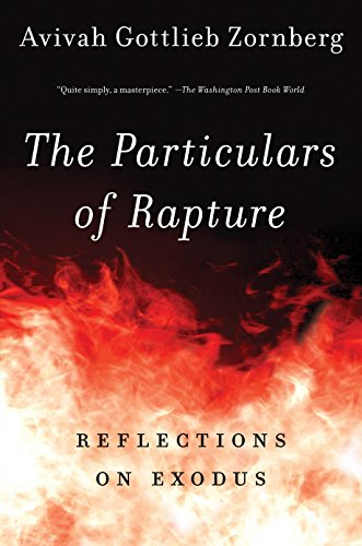Cover of The Particulars of Rapture: Reflections on Exodus
