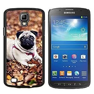 TECHCASE---Cubierta de la caja de protección para la piel dura ** Samsung Galaxy S4 Active i9295 ** --Pug perro de mascota Autumn Leaves Naturaleza