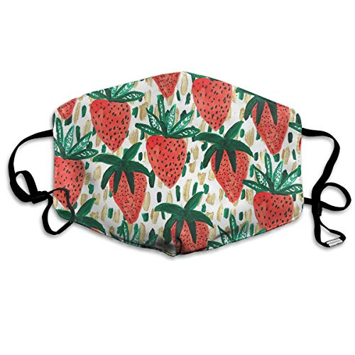YUANSHAN Dust Mask Red Strawberry Outdoor Mouth Mask Anti Dust Mouth Mask for Man Woman -