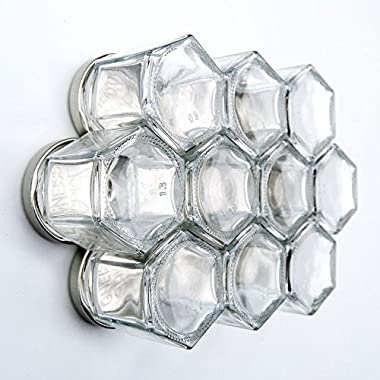 Gneiss Spice DIY Magnetic Spice Rack: Includes Empty Hexagon Jars, Magnetic Lids & Clear Labels (Set of 10, Silver Lids)