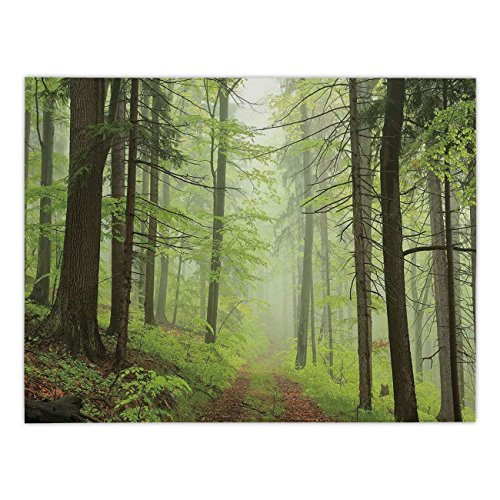 Polyester Rectangular Tablecloth,Outdoor,Trail Trough Foggy Alders Beeches Oaks Coniferous Grove Hiking Theme,Light Green Light Yellow,Dining Room Kitchen Picnic Table Cloth Cover,for Outdoor Indoor (Alder Sofa)