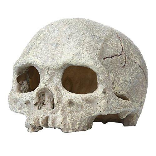 Saim Aquarium Decor Resin Emulational Human Skull Ornament
