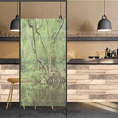 3D Decorative Privacy Window Films,Forest Moss Leaves Nature Themed Isolated Jungle Image Photo,No-Glue Self Static Cling Glass Film for Home Bedroom Bathroom Kitchen Office 24x71 Inch