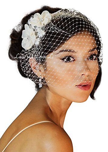 Leslie Li Classic Bridal Birdcage Veil with Vintage Inspired Lace Applique - One Size White 23-117 (White) - Leslie Cage