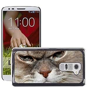 Super Stella Slim PC Hard Case Cover Skin Armor Shell Protection // M00149671 Cat Cat Face Head Cat'S Eyes Animals // LG G2 D800 D802 D802TA D803 VS980 LS980