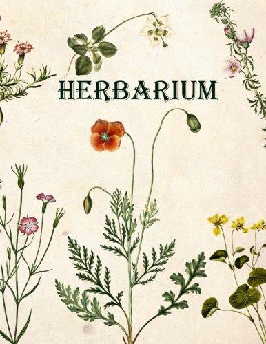 Art Book Herbarium Herbarium Von Deutschland Pdf By Herbarium