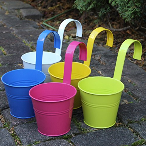 Large Hanging Tin Metal Basket Bucket Planters Pot Assorted Colors Set of 5 Wall Mountable Multicolor Set for Plant and Flower ... Large Hanging Tin Metal Basket Bucket Planters Pot Assorted Colors Set