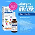 NatraBio Children's Cold & Flu Relief Homeopathic Medicine | Kids and Infants 4 Months & Older | No Sugar, No Side Effects & Non-Drowsy | 1 Fl. Oz.