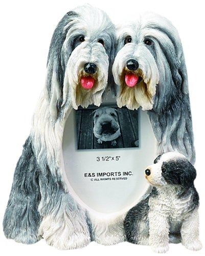 Bearded Collie Gift Picture Frame Holds Your Favorite 3x5 Inch Photo, A Hand Painted Realistic Looking Bearded Collie Family Surrounding Your Photo. This Beautifully Crafted Frame is A Unique Accent (Bearded Collie Breed)