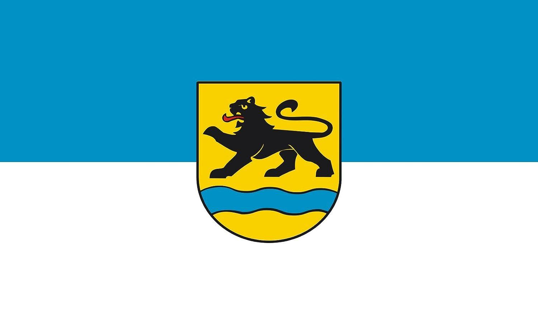 Diplomat magFlags Raum-Fahne mit modernem verchromtem Fahnenständer und Marmor-Fuß   Flagge  Birenbach 90x150cm   Höhe  230cm