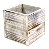 Koyal Wholesale Square Cube Shabby Chic Wood Vase (Pack of 6), 4'', White
