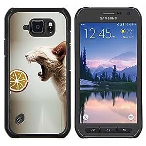 Caucho caso de Shell duro de la cubierta de accesorios de protecciš®n BY RAYDREAMMM - Samsung Galaxy S6Active Active G890A - Sphynx Oriental Gato sin piel Raza Lollipop