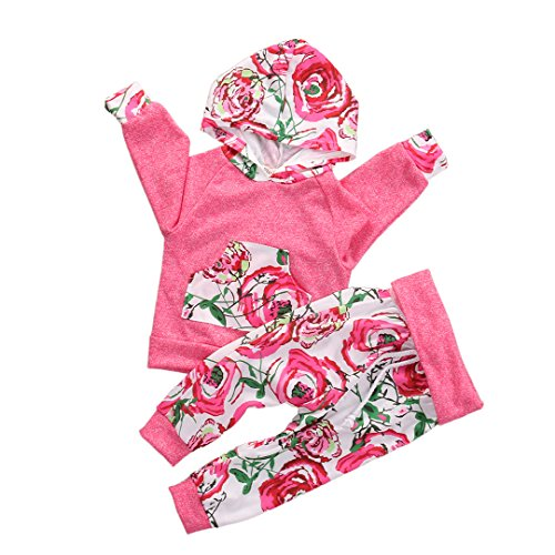 Baby Girls Long Sleeve Floral Hoodie + Pant 2 PCS Outfits Clothing Set (80 Fit 3-6M)