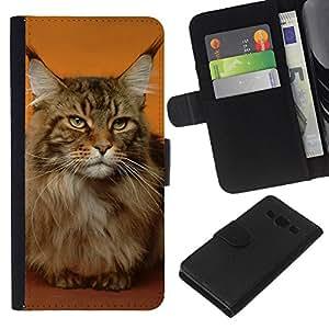 Stuss Case / Funda Carcasa PU de Cuero - Maine Coon Cat Orange House Pet - Samsung Galaxy A3