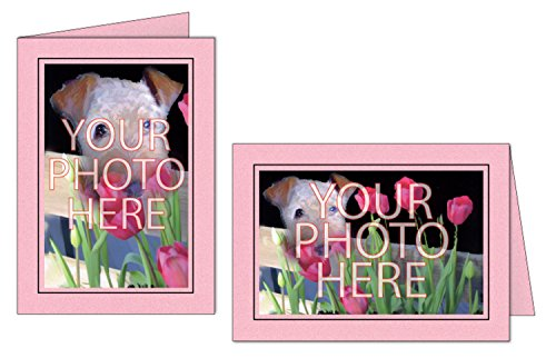 Photographer's Edge, Photo Insert Card, Pink with Black Border, Set of 10 for 4x6 Photos