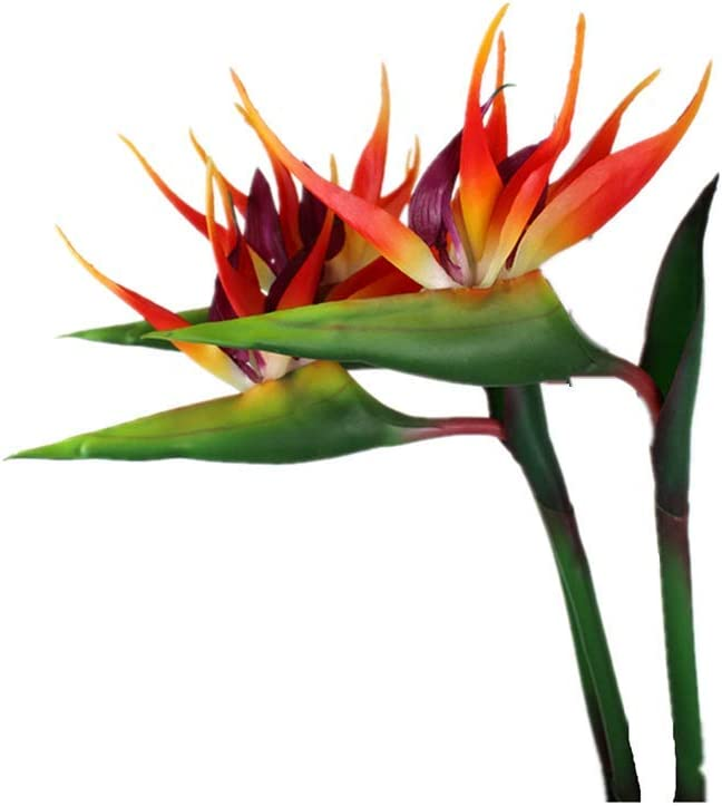 Large Bird of Paradise 32 Inch Permanent Flower ,Flower Stem 0.5 Inch ,UV Resistant No Fade Flower Part is Made of Soft Rubber PU,Artificial Flower Plants for Home Office 2 Pcs (Orange red)