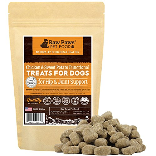Holistic Treatments (Raw Paws Pet Hip and Joint Dog Treats, 5-ounce - Made in USA - Hip and Joint Dog Supplements for Arthritis Pain Relief and Increased Mobility - Glucosamine Hip and Joint Soft Chews for Dogs)