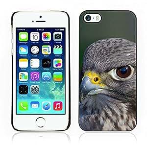Carcasa Funda Case // Falcon V0000113//Apple iPhone 5 5S
