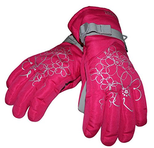 [Ski Gloves Winter Outdoor Sports Snowboard Gloves Skiing Hiking Climbing for Women] (Ladies Snowboard Clothing)
