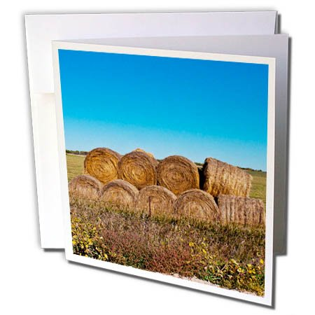 3dRose Danita Delimont - Agriculture - USA, Nebraska, Crawford, Stacked Round Hay Bales - 12 Greeting Cards with envelopes (gc_279227_2)