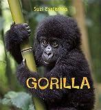 Eye on the Wild: Gorilla