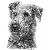 """Irish Terrier Pencil"" A Limited Edition Print"