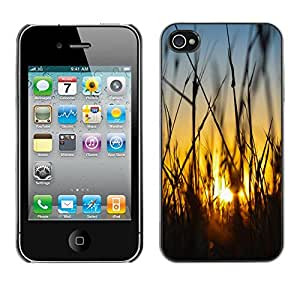 X-ray Impreso colorido protector duro espalda Funda piel de Shell para Apple iPhone 4 / iPhone 4S / 4S - Field Rye Farming Summer