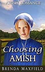 Amish Romance: Choosing Amish (Elsie's Story Book 3)