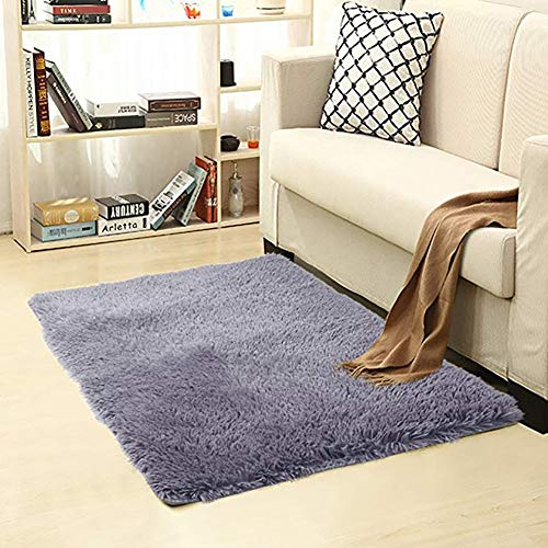 ZUIYIN Bath Mat Shaggy Rug,Silk Hair Non-Slip Carpet Shag Rug Floor Mat Carpet Decoration Living Room Coffee Bedroom Bedside Shaggy Carpet,60x120cm/2 x 4ft,Gray