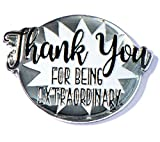 Thank You for Being Extraordinary Appreciation Award Lapel Pins, 12 Pins