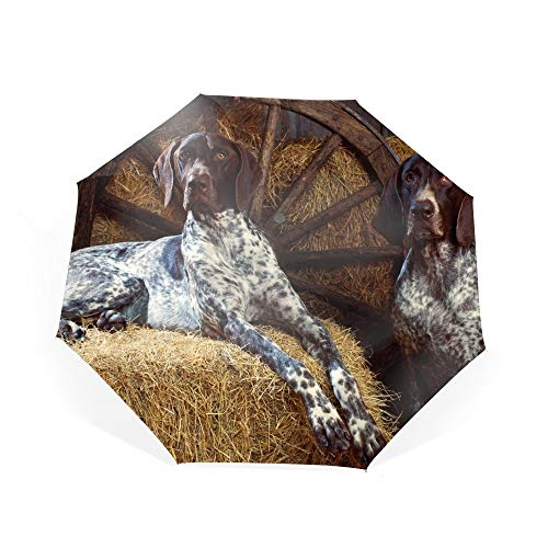 Animal German Shorthaired Pointer Dogs Umbrella Automatic Compact Travel Umbrella ()