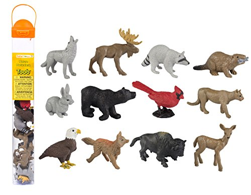 - Safari Ltd. Nature TOOB - Quality Construction from Safe and BPA Free Materials