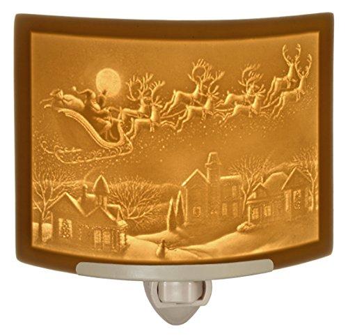 Santa Garden Lights in US - 4
