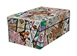 That's My Ticket MLB Baltimore Orioles Souvenir Gift/Photo Box, One Size, Multi
