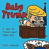 Baby Trump 2020 Wall Calendar