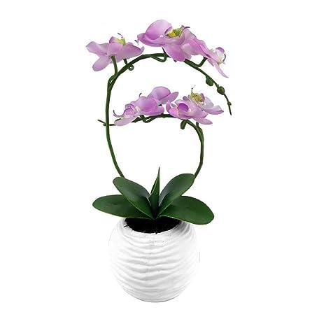 Futurepast künstliche Blumen im Topf, Kunstpflanze Orchidee Topfpflanzen, künstlicher Bonsai für Büro Zuhause Dekoration by