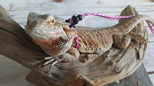 Adjustable Reptile Leash Green Harness Great for Reptiles or Small Pets - 100% Adjustable Green, Orange, and Blue Option (6 Ft Pink) by My Reptile Rocks