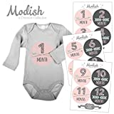 12 Monthly Baby Stickers, Pink, Gray, Tribal, Arrows, Chevron, Baby Month Stickers Girl, Baby Book Keepsake, Baby Shower Gift