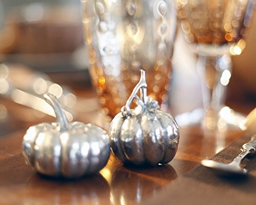 Shakers Salt Pepper Pewter (Vagabond House Pewter Harvest Pumpkin Salt and Pepper Shaker Set 2.5