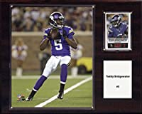 NFL Minnesota Vikings Teddy Bridgewater Player Plaque, 12 x 15-Inch