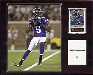 NFL Minnesota Vikings Teddy Bridgewater Player Plaque, 12 x 15-Inch