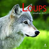 Loups calendrier 2017